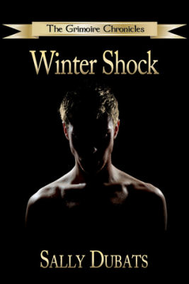 Winter Shock Book Tour & Guest Post