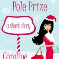 The North Pole Prize
